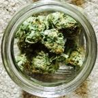 Marijuana, Perception, and Cognition